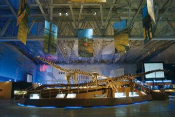 アジア発・世界最新恐竜大陸